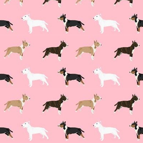 Bull Terrier variety coat colors dog breed fabric by pet friendly pink