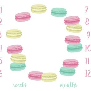 "42"" x 36"" milestone blanket pastel macarons girls sweets design"