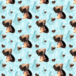 Brussels Griffon Matching Fabric