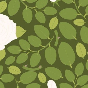 Rose Hedge_white
