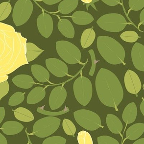 Rose Hedge yellow
