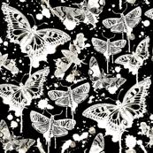 Haunted Splatter Moths