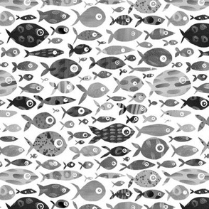 Grey Fish - white background