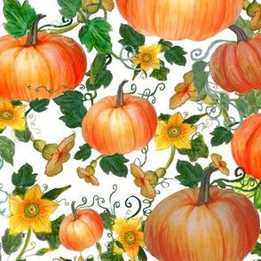 watercolor  pumpkins and pumpkin flowers