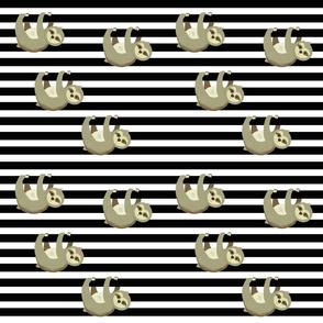 Sloths on Stripes