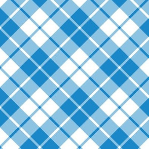 cyan and white diagonal tartan