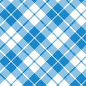 cyan and white diagonal tartan