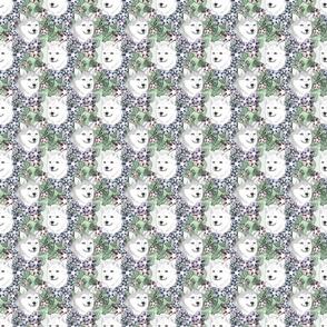 Floral Alaskan Klee Kai portraits C - small