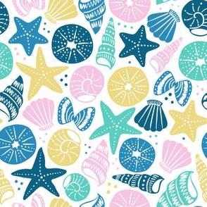 sea shells 4