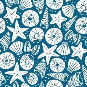 sea shells 7