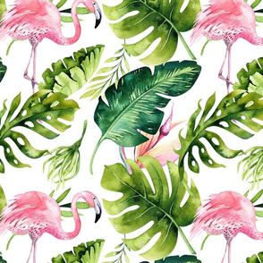 flamingo tropical 1