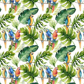 Tropical leaves  and parrots