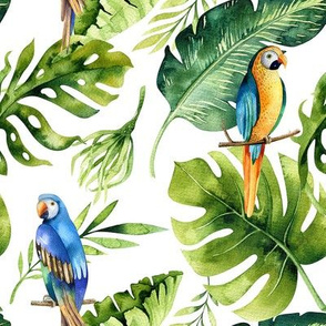 Tropical leaves  and parrots 2