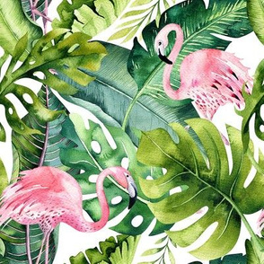 Tropical leaves  and flamingo7