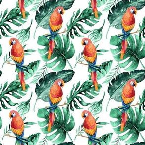 Tropical florals and parrots