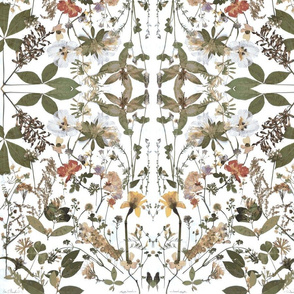 Pressed Flowers - Geometric