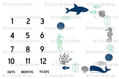 "nautical milestone blanket - 54"" x 36"""