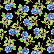 Rpatricia-shea-designs-wild-blueberries-tossed-black-perfect-14-150_shop_thumb