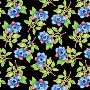 Wild Blueberry Sprigs