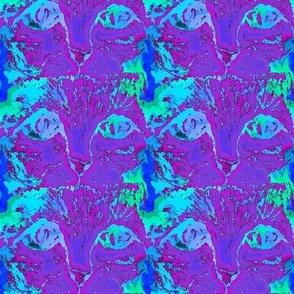 CAT EYES PSYCHEDELIC PURPLE BLUE AQUA