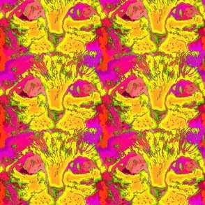 CATS EYES POP ART yellow pink orange CHECKERBOARD