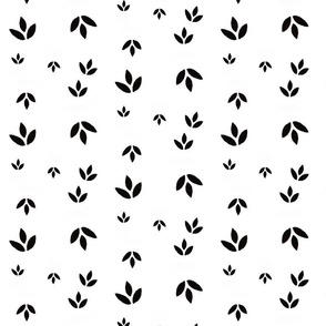 Basic leaves