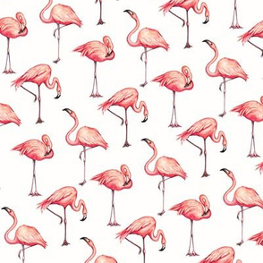 Flamingo - White