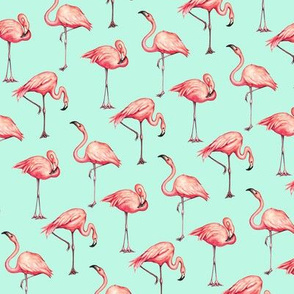 Flamingo - Blue
