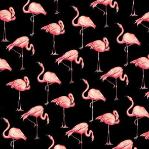 Flamingo - Black