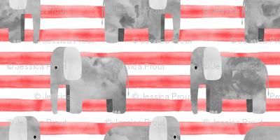 elephants - red stripes