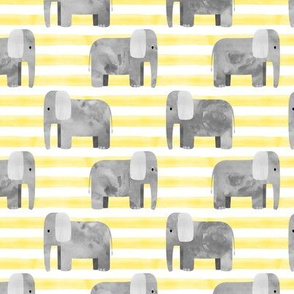 elephants - yellow stripes