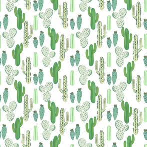 Various cacti desert vector seamless pattern