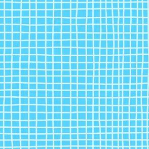 Swimming Pool Grid