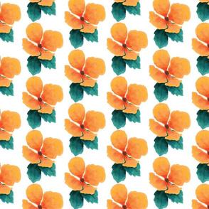 tropic-flower