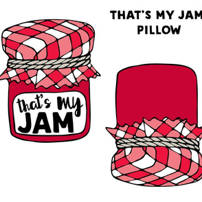 cut and sew pillow - that's my jam - red