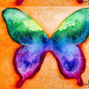 Orange Rainbow butterfly #artbygloricom