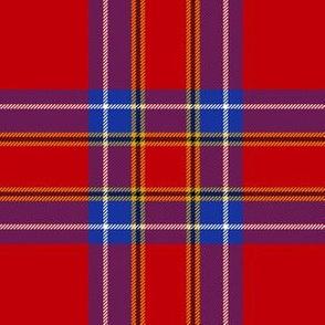 "Inverness tartan, 6"" modern (blue/yellow stripe)"