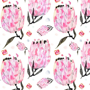 Protea & Iced Vovos // Australian wild flowers waratah pink flora