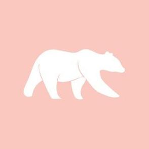 "P- 6"" bear on pink"