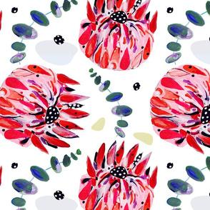 Waratahs // Australian wild flowers red floral protea eucalyptus leaves