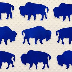 Buffalo Run-ch