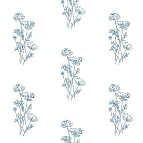 Queen Anne's Lace Blue On White