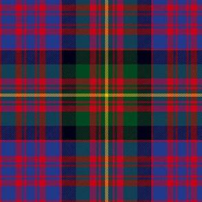 "Carnegie tartan, 6"" modern colors"