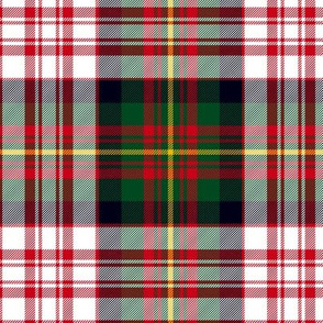 "Carnegie dress tartan, 6"" modern colors"
