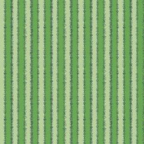 Rayas | Stripes #P7