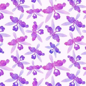 watercolor purple orchids