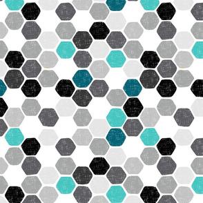 Hexagon4
