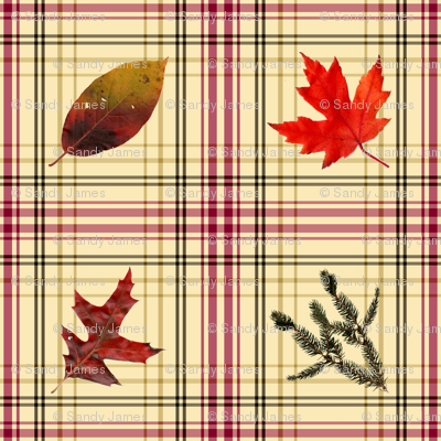 rustic_autumn_plaid_6x6