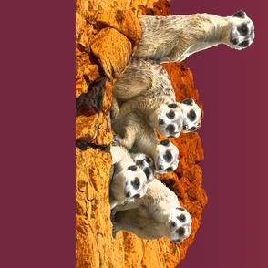 meerkats_fabric_2