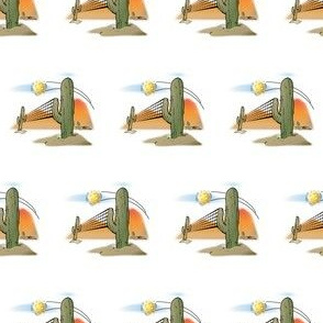 Pickleball Cactus Net Arizona